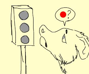 DOGS CANT READ TRAFFIC LIGHTS BEC. COLOURBLIND