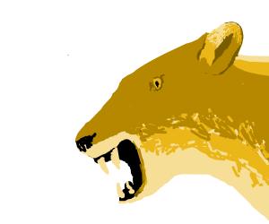 Lionness going Roar!