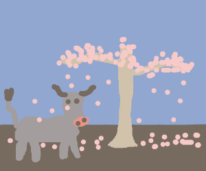 Cow under a cherry blossom