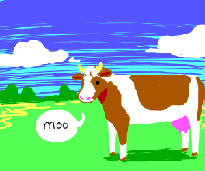 The cow in the field goes moo