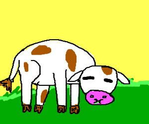 Cow eats some yummy grass
