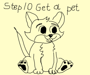 Step 9: Give up and settle down