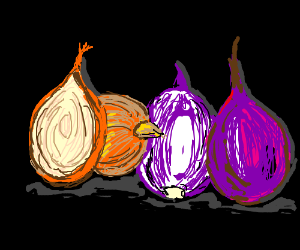 Perfectly drawn onions