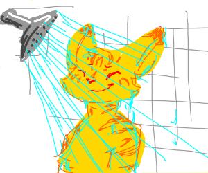 Cat shower