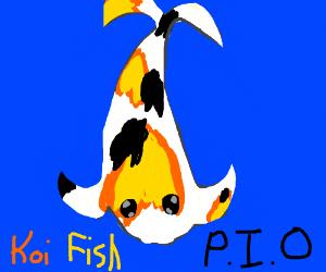 Koi fish P.I.O. (pass it on)