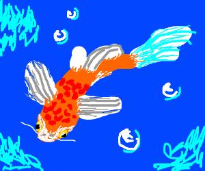 Koi fish fruit thing