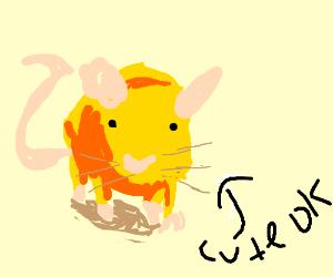cute lil yellow rat