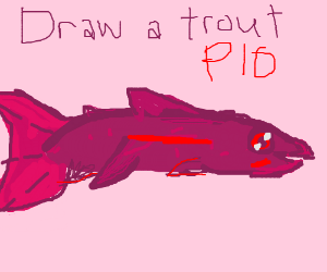 how to draw a trout