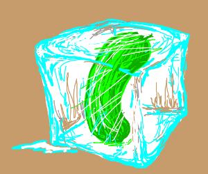 a cucumber in an ice-cube