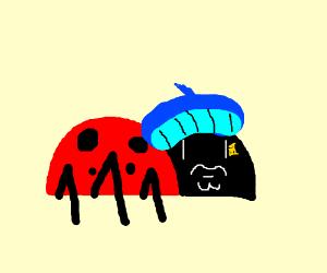 that one french ladybug cartoon