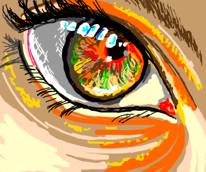 forest fire reflected in her eye