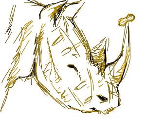 Peanut rhinoceros