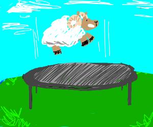 ram trampoline