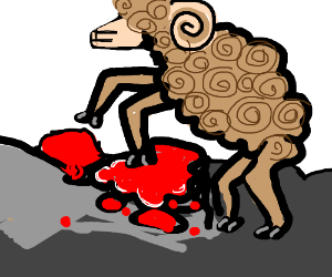 brown sheep stepping on bloody rock