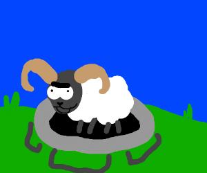 Ram trampling
