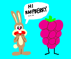 rabbit is a fanatic for raspberries
