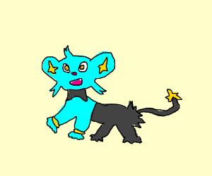 Shink pokemon PIO