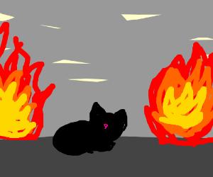 black cat w/ fire