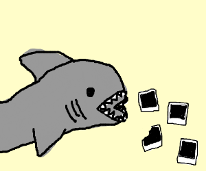 A shark ate all the pics