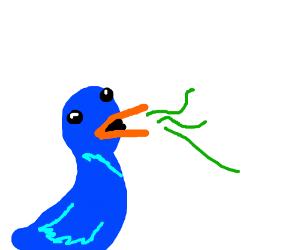 Bird with Bad Breath