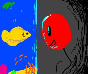 Mr balloon likes to talk to fishies