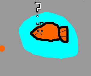 Orange fish is confused about its blue aura