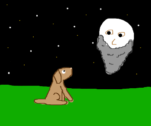 young doggo seeks guidance from the wise moon