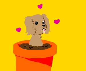 Puppy growing out of a flower pot