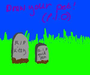 Draw your pet! (P.I.O.)