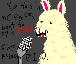 Fire Alpaca P I O  - Drawception