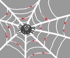 Edgy spider