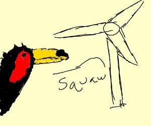 Van der Valk's toucan flies into wind turbine