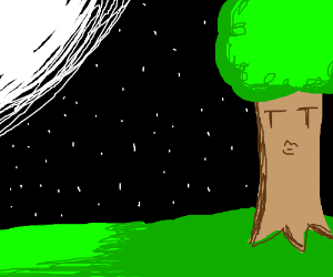 Sassy tree in a moonlit night with treefriends