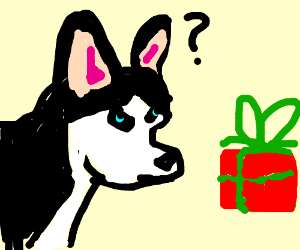 husky wants to know what he gets