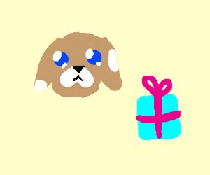 Puppy & Present