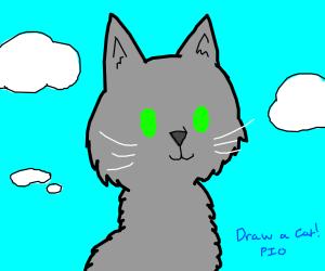 Draw a cat! (PIO)