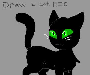 Draw a CAT (PIO)