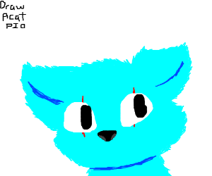 Draw a cat PIO