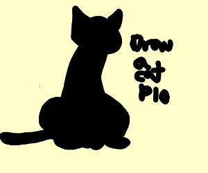Draw a Cat P.I.O.