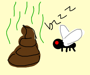 a pile of poo and a fly