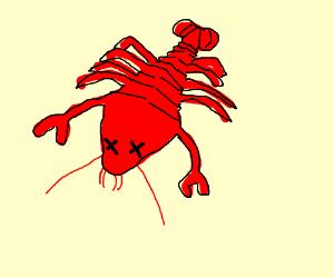 Dead Lobster
