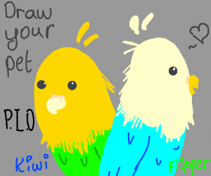 Draw Your Pet PIO (Pass it on)