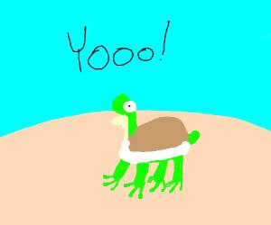 Beach turtle frog hybrid screaming YOOOO