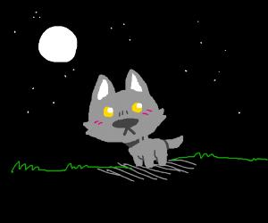 a Chibi Wolf