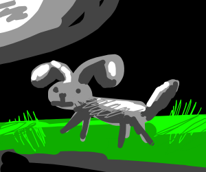 Gray Dog on grass at night with full moon