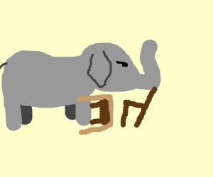 Elephant barricaded behind chair and table