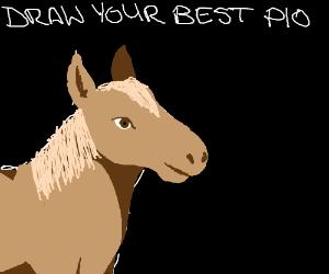 draw your best PIO