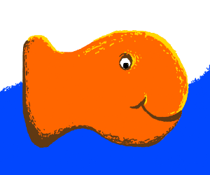Finn the goldfish