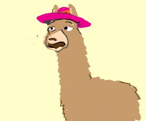 7b933569ac2 Llamas with hats (look it up on youtube) - Drawception