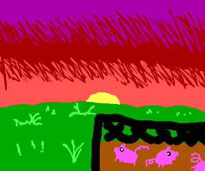 Pigpen at sunset